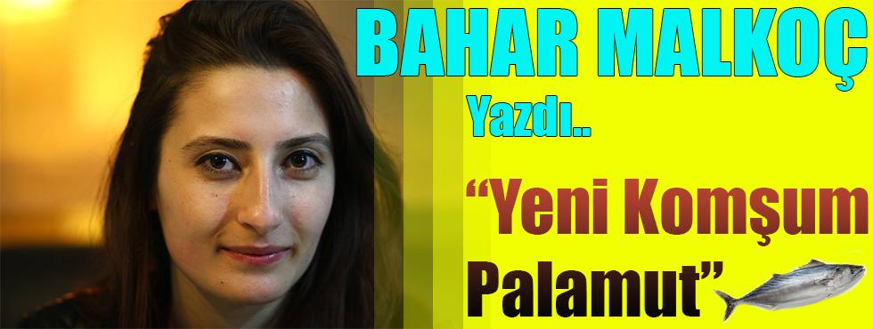 """Bahar Malkoç Yazdı """" YENİ KOMŞUM PALAMUT """""""