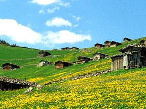 Doğu Karadeniz'e Yerli Turist Akını