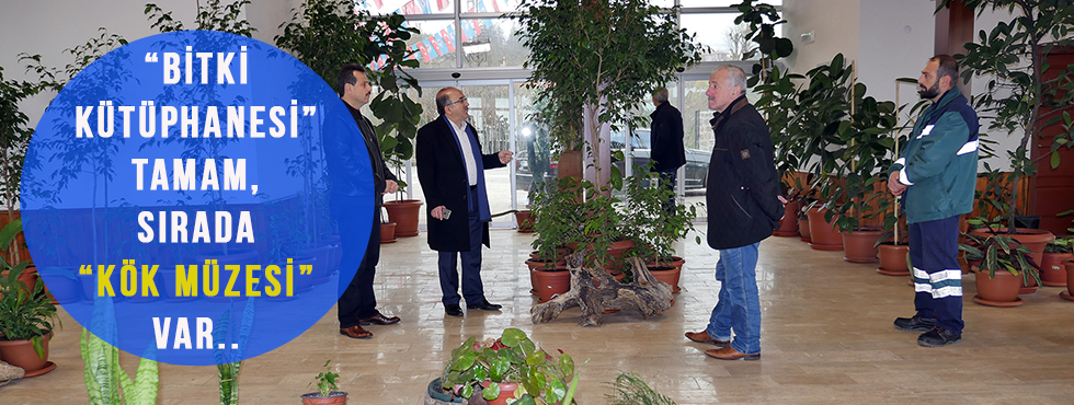 'Bitki Kütüphanesi' Tamam, Sırada 'Kök Müzesi' Var...