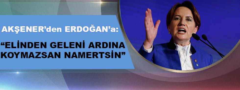 Akşener'den Erdoğan'a: Elinden Geleni Ardına Koymazsan Namertsin