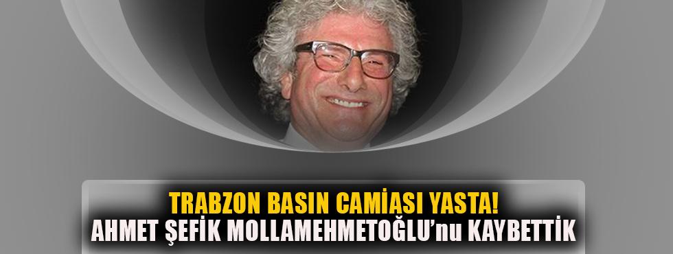 Ahmet Şefik Mollamehmetoğlu Hayatını Kaybetti