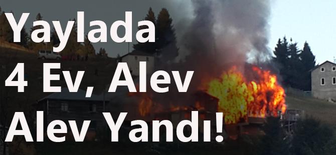 Yaylada 4 Ev Alev Alev Yandı!