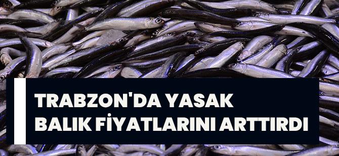 Trabzon'da Yasak Balık Fiyatlarını Arttırdı