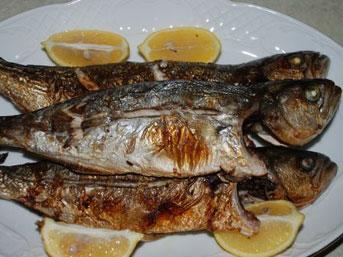 Balıkseverler Bu Haberi Dikkatli Okuyun