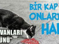 """Trabzon Barosu'ndan """"4 Ekim Dünya Hayvanları Koruma Günü""""İle İlgili Basın Açıklaması"""
