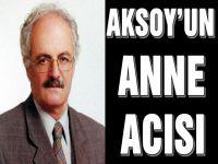 Gazeteci Yazar Hikmet Aksoy'un Annesi Vefat Etti.