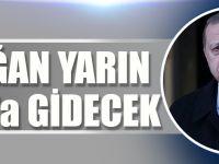 Erdoğan Yarın Katar'a Gidecek