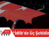 Erdoğan Açıkladı: İdlib'de Üç Şehidimiz Var!