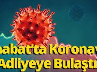 Akçaabat'ta Koronavirüs Adliyeye Bulaştı!