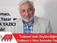 Trabzon'daki Zeytinciliğin Yok Edilişi Trabzon'a Nice Sorunlar Yaşatmaktadır