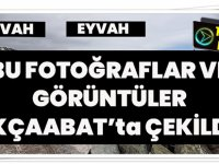 Eyvah,Eyvah... Bu Fotoğraflar ve Görüntüler Bugün Akçaabat'ta Çekildi!