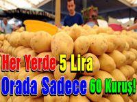 Patates Orada Çok Ucuz