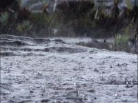 Bir Hafta Boyunca Özellikle Öğleden Sonraları Yağışlı Olacak