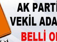 AK Parti Trabzon milletvekili için o isimler başvurdu
