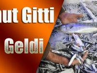 Trabzon Balık Haline 2 Bin Kasa Hamsi Geldi
