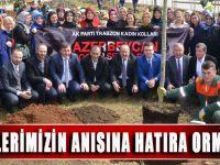 Hocalı Katliamında Katledilen Soydaşlarımız Ve Şehitlerimizin Anısına Şehitlik Hatıra Ormanı Kuruldu