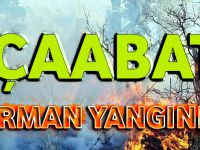 Akçaabat Yıldızlı Mahallesinde Ormanlık Alanda Yangın Çıktı.