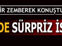 CHP'de Sürpriz İstifa! Zehir Zemberek Konuştu
