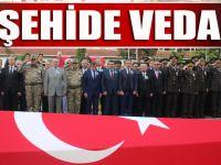 Trabzon'dan Şehidine Son Veda
