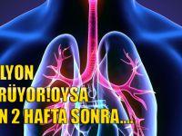 Sigarayı Bırakınca Vücutta Neler Oluyor?