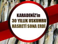 Karadeniz'in 30 Yıllık 'Uskumru Hasreti' Sona Erdi